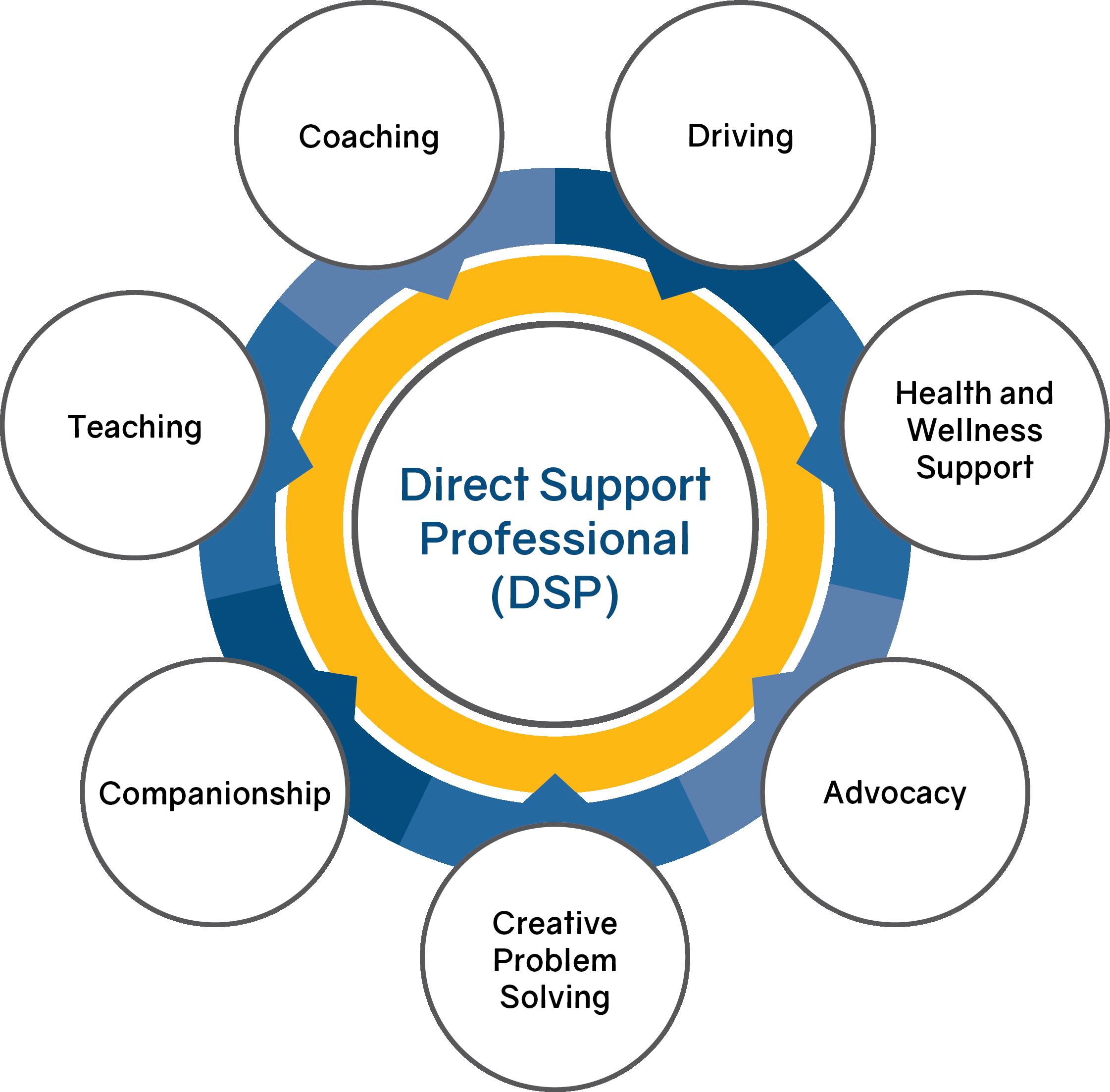 DSP Interdisciplinary Chart
